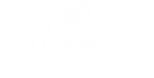 Connect-Logo-White.png