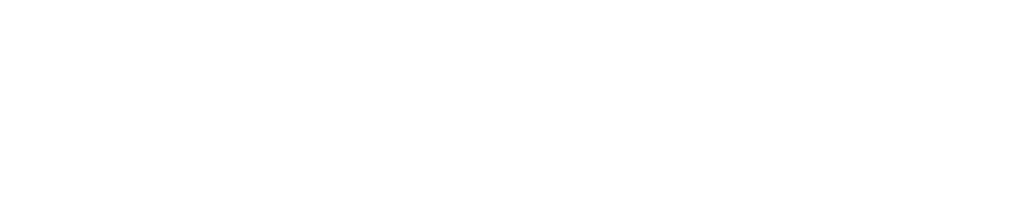 The Connect Program